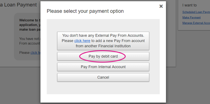 Payment option selection screen shot