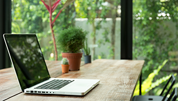 Laptop on desk with greenery in background